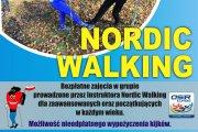 Zajęcia z Nordic Walking