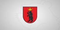 Ogłoszenie Burmistrza Miasta Łuków